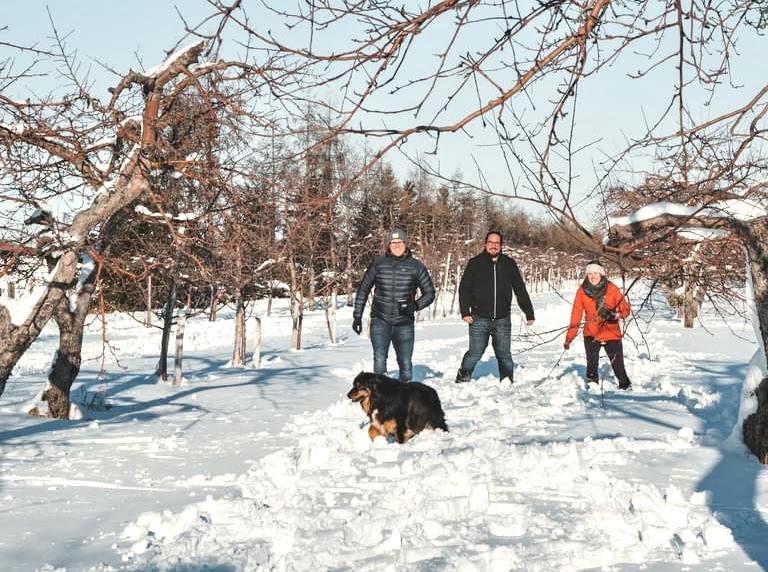 6 cidreries où pratiquer des activités en plein-air cet hiver